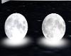 Moon Seats