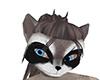Raccoon Musasha