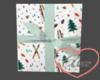 Present Wall Ski's