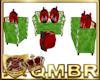 QMBR Kid 40% LadyBug Set