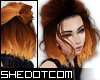 |SC| Ember Ombre