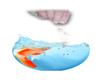 123me Goldfish