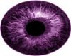 Charlotte eyes XD