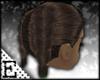 [E] Sensual Brown Braids