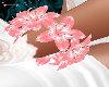 Lily Kitten Pink