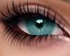 Bermuda Eyes
