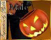 I~TrickorTreat Pumpkin*M