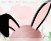 AT Black Bunny Ears