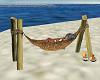 Gilligan Isle hammock 2