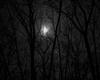 [BM]Dark Basement