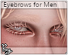 Sand Blond Eyebrows
