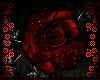 ♔ Crimson Rose