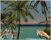 Sea Turtle Palm Trees