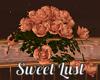 Sweet Lust Fence Roses