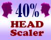 Resizer 40% Head