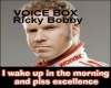 Ricky Bobby Voicebox