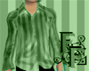 Striped Silk - Green