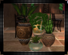 Tuscan Potted Plants