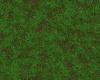 !Grass Rug