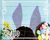 ¥ Sweet Bunny - Purple