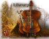 Library cello