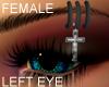 Pierced Eyebrows