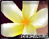 ~Derivable Plumeria~