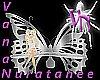 (VN) Glass Butterfly Ben