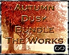 [CFD]Autumn Dusk-Works