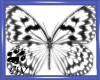 CW White Butterflies Pet