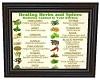 SoS Healing Herbs