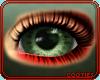 🍵 Sage | Eye 2