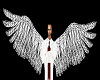 Derivable Animated Wings