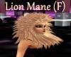 [BD]LionMane(F)