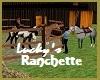 Lucky's Ranchette