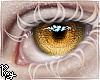Pious Eyes - Amber
