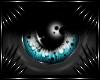 [K] Avere Eyes (U)