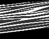 (A) Zebra rug