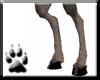 Dark Deer legs