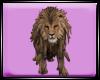 Dp Lion