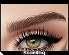 s| Cara Brows KD . Brown
