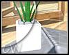 Summer Plant v2