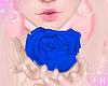 K|BlueRoseStillAvi