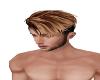 ~H~ M-Sexy Caramel Hair