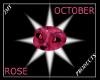 Rose Zircon Eyes (M)