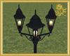 Park Lamp Post