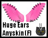 Anyskin Huge Ears (F)