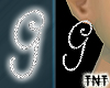 Diamond G Earrings