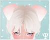 Y| Puppy Ears Pink