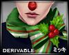 ! Christmas Scarf